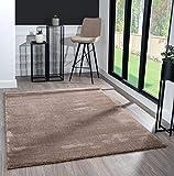 Mia´s Teppiche Scarlett - Alfombra Moderna de Pelo Corto (20 mm), Color marrón, 80 x 150 cm, 100% Polipropileno, 80 x 150 cm