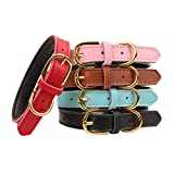 AOLOVE Basic Classic Padded Leather Pet Collars for Cats Puppy Small Medium Dogs (Brown, Medium)