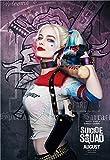 N / A Poster di Film Seta Poster Harley Quinn Joker Stampe su Seta Immagini Decorazioni murali Camera da Letto per la casa Stampa su tela50x75cm