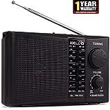 iBELL FM180U Portable FM Radio with USB\SD\MP3 Player & Dynamic Speaker 4 Band,Black