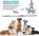 Freihand Hundeleine Doppelleine TaoTronics zum Hunde Joggen, Spazieren, Wandern Radfahren – Hände Frei Trainings-Gürtel mit doppeltem Gummiseil und Haltegriff für alle größe und kleine Hunde - 4