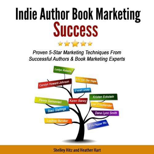 Indie Author Book Marketing Success audiobook cover art