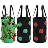 Strawberry Grow Bags 3 Gallon, Luxiv Strawberry Planting Bags with 12 Grow Pouches Plant Growing Hanger Bag for Tomato, Chili, Strawberry Planting Containers Garden Grow Bags (3, Green+Black)