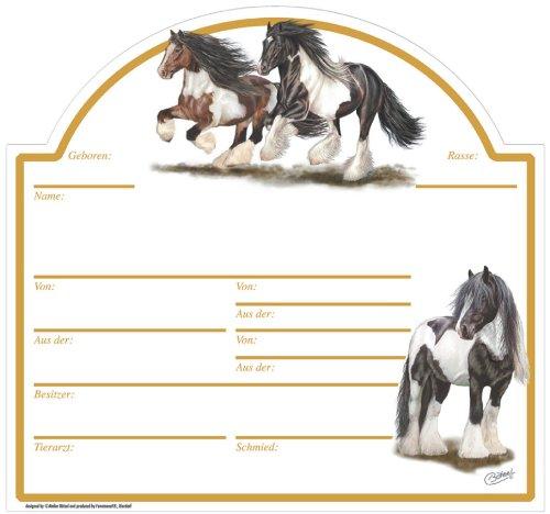 Stalltafel Irish Tinker - Christina Bötzel Reitsport Pferd Pferde Stallschild Schild Reiten Geschenk Deko