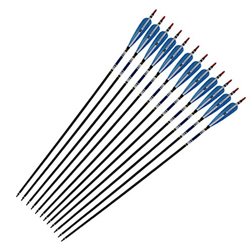 "zzuus 31"" Carbon Arrows with Blue and White Turkey Feathers Targeting Arrows Replaceable Broadheads for Target Practice Hunting Archery Recurve Bow (12pcs)"