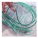 HLMIN Lonas Impermeab Les Exterior Lona De PVC Impermeable Fácil De Plegar Transparente con Ojales A Prueba De Herrumbre 0.3Mm para Exteriores (Color : Clear, Size : 1x3m)