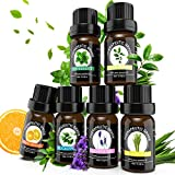 Essential Oils of Top 6,Aromatherapy Oils, Diffuser Oils, Essential Oils Set for Aromatherapy Diffuser, Massage, Soap&Candle Making. Scented Gift Set. Diffuser Essential Oils, Peppermint, Lavender