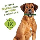 Marengo Zahnbürste XS, 1er Pack (1 x 360 g) - 2