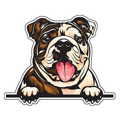 WickedGoodz Smiling English Bulldog Vinyl Decal - Dog Breed Bumper Sticker - for Laptops Tumblers Windows Cars Trucks Walls