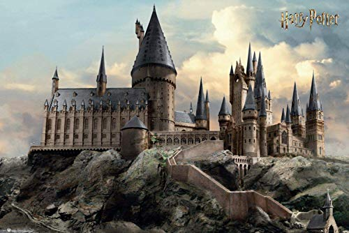 Harry Potter Hogwarts Day poster(11x17inch,28x43cm)
