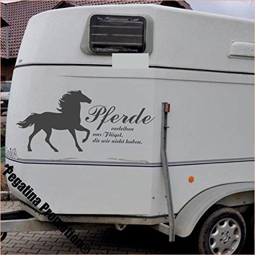 Pferd mit Spruch
