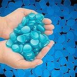 HOOJUEAN 200 piedras luminosas de alta calidad que brillan en la oscuridad, azul DIY decorativas piedras luminosas para yardas, césped, pasarelas, jardines y acuario