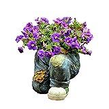 ASDWS Macetas para Flores de Flores para Plantas, 8.26 Pulgadas sembradoras suculentas para Interiores, macetas/Plantas de jardineras/de Interior - Crecimiento de la Planta Saludable