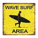 CAPRILO Placa Decorativa Pared de Metal Área Surf. Cuadros y Apliques. Adornos Hogar. 30 x 30 x 0.1...
