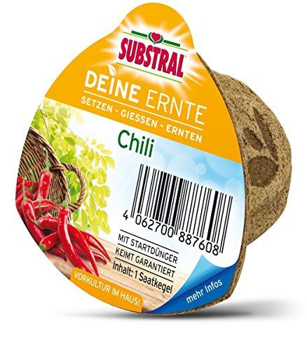 Substral Deine Récolte Saatkegel Chili
