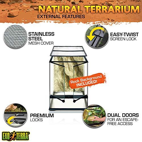 Exo Terra Terraristik Starter Set Regenwald-Terrarium, mittelgroß - 4