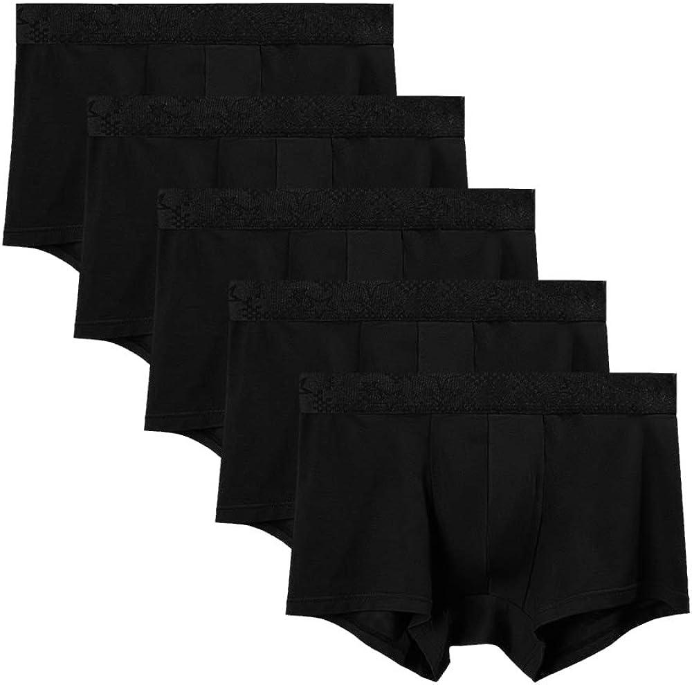 AORGSVI 5 Pack Men's Underwear Boxer Briefs, Soft Breathable Comfortable Viscose Trunks
