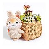 DYUNQ Kleiner Keramik Sukkulenten Pflanzer Töpfe Set von 5, Kaninchen Keramik Blumentopf, for Büro zu Hause Tabelle Fensterbank Dekoration (13.5x9.5x7.5 cm)