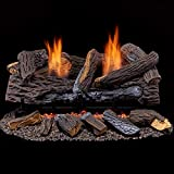 Best Gas Fireplace Inserts - Duluth Forge Ventless Dual Fuel Set-24 in. Stacked Review