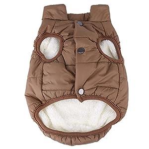Fdit pour animal domestique par temps froid Manteau coupe-vent Chien Gilet Veste Cotton-padded Veste pour chiens/chats en automne et Hiver