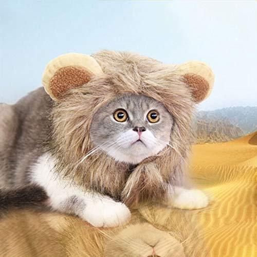 ZLALF Peluca De Gato De Perro Mascota,Lion Mane Peluca Disfraz con Orejas,para Halloween Actividad De Fiesta del Festival De Pascua,L