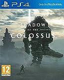Shadow of the Colossus - PlayStation 4 [Importación francesa]