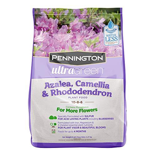 Pennington 100525940 UltraGreen Azalea, Camellia & Rhododendron 10-8-6 Plant Food, 5 lb