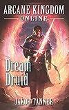 Arcane Kingdom Online: Dream Druid