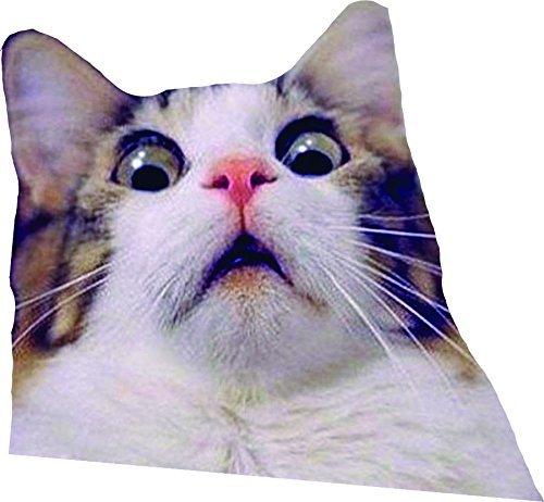 Amazon Com Funny Cat Sticker Scaredy Cat Decal Cat Sticker Kitty Sticker Handmade