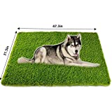 Artificial Grass, Professional Dog Grass Mat, Potty Training Rug and Replacement Artificial Grass Turf, Large Turf Outdoor Rug Patio Lawn Decoration, Easy To Clean with Drainage Holes (32inchx 48inch)