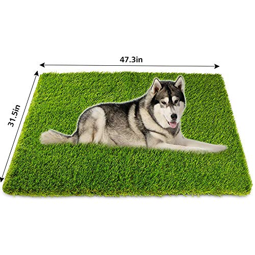 Outdoor Dog Pad