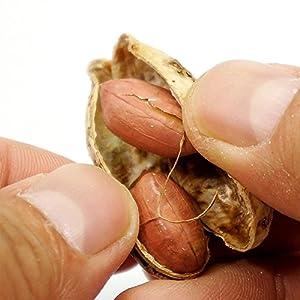 千葉県産 ピーナッツ お得用 500g うす皮付き 無塩 ピーナッツ