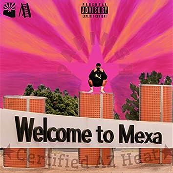 Welcome to Mexa