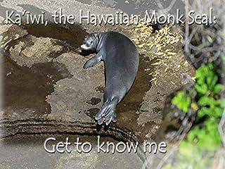Ka'iwi, the Hawaiian monk seal: get to know me