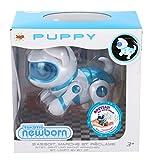 Splash Toys - 30647P - Teksta - Puppy Newborn V2 - Bébé chien Robot interactif