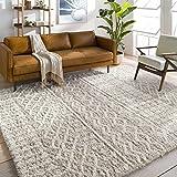 Artistic Weavers Bohemian/Global Area Rug, 5'3