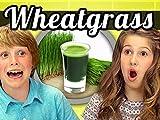 Kids Vs. Wheatgrass Shots