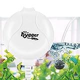 hygger Pompa d'Aria per Acquario Silenziosa 420mL /1.5W, Mini Pompa Ossigeno ad Alte Prestazioni Durevole Pompa ad Aria di Ossigeno per Acquario di 50 litres (Bianco)