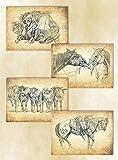 Poster-Set: Vaquero
