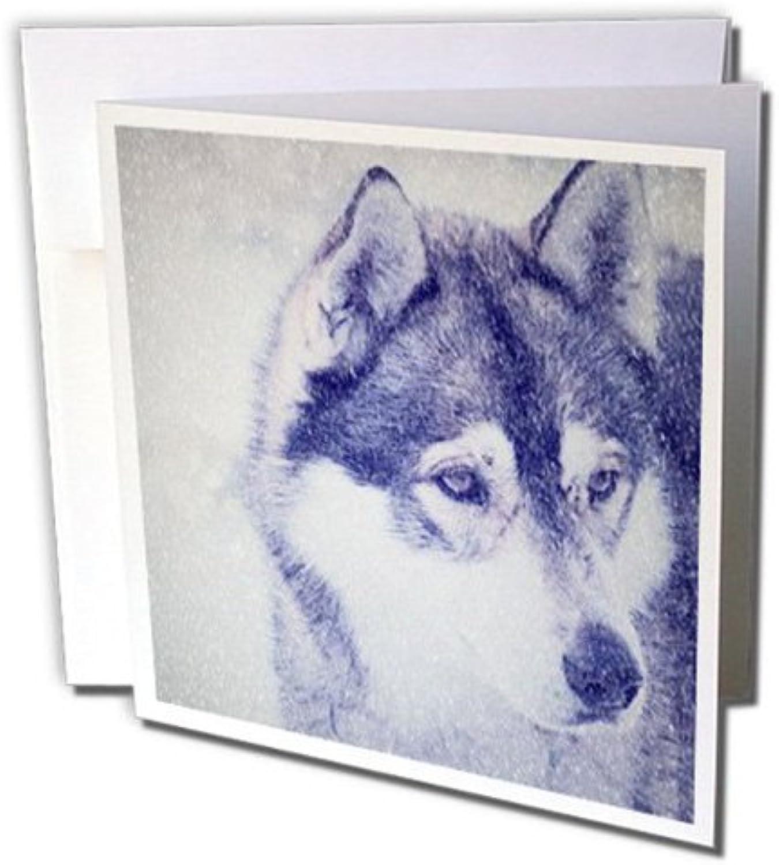 3D Rosa Grußkarten mit Umschlägen – Set 12 12 12 Stück Grußkarte (GC 220689 _ 2) B071DNDQQ4   Kostengünstiger    Verrückter Preis, Birmingham    Üppiges Design  850ec1