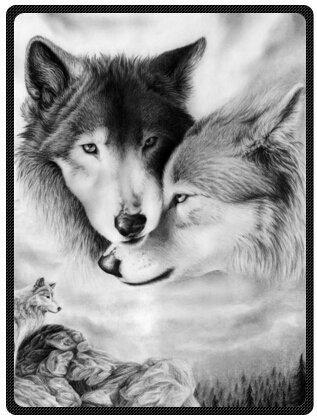 YISUMEI - 150 x 200 cm Decke - Schwarzweiss Wolf Fleecedecke,Kaschmir-Gefühl Kuscheldecke Geeignet für Bett oder Sofa