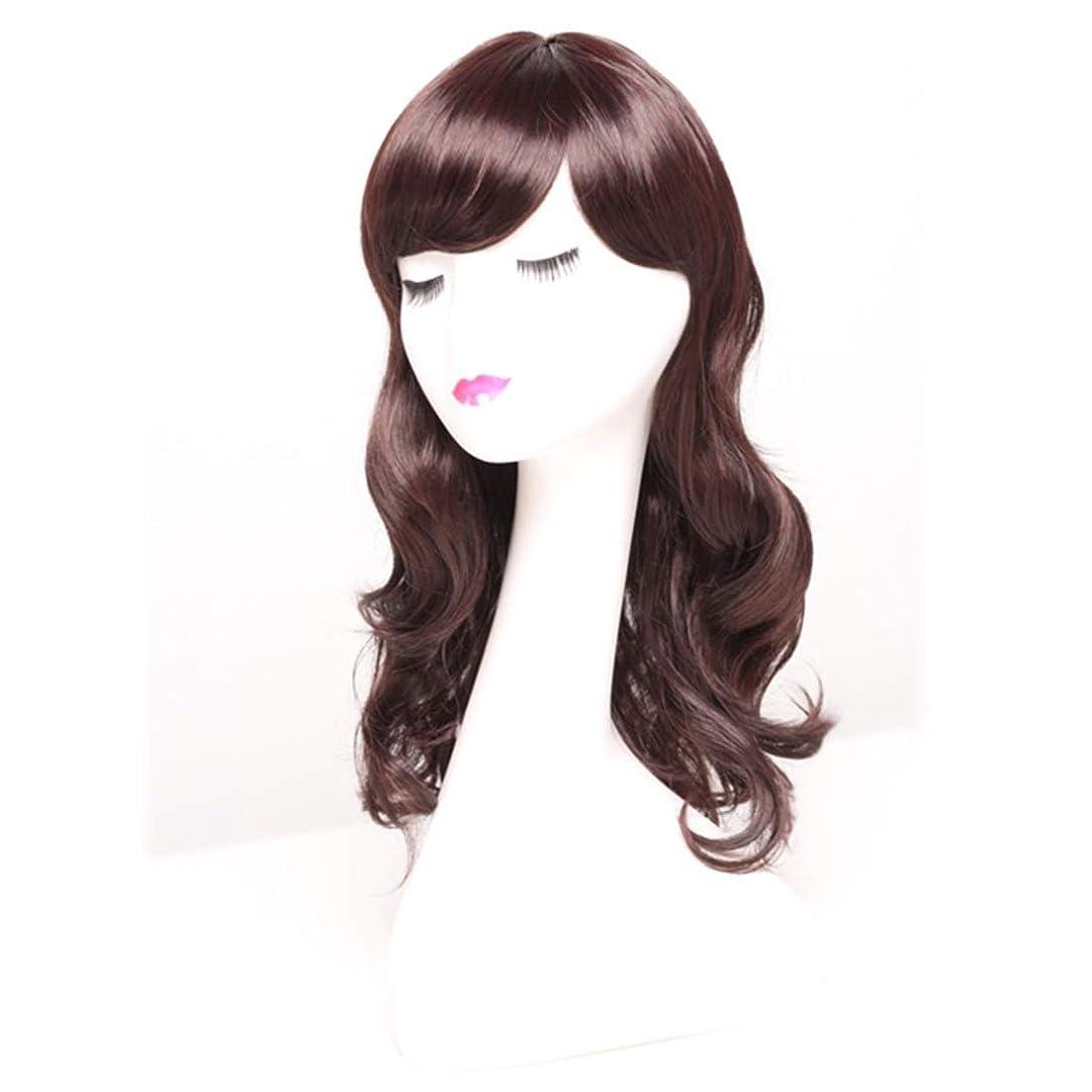 スツール即席苦しめるSummerys 女性のための長い巻き毛のかつらかつらかつらと人工的な毛髪のかつら本物の髪として自然なかつら