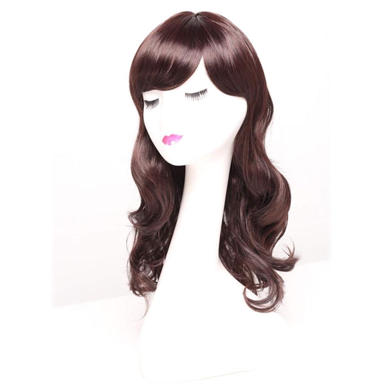 自治発明する警報Summerys 女性のための長い巻き毛のかつらかつらかつらと人工的な毛髪のかつら本物の髪として自然なかつら