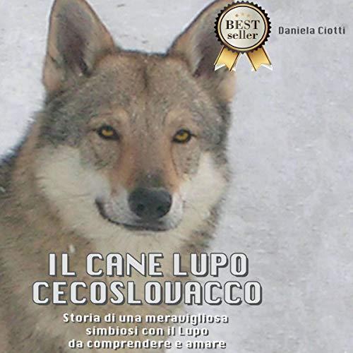 Il cane lupo cecoslovacco copertina