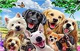 MBWLKJ 3D papel pintado 3 D Photo Wallpaper Un grupo de perros de las fotos Mural personalizado Murales de pared 3D Papel tapiz para salas de estar 3 D Pintura-150cmx100cm