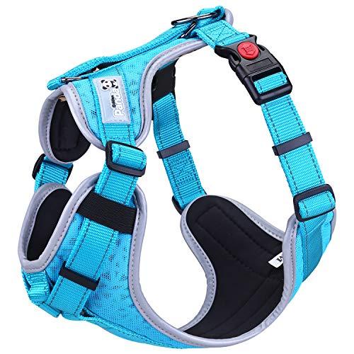 Hundegeschirr Atmungsaktiv Brustgeschirr für Kleine Mittlere Große Hunde, Einstellbar Reflektierendes Weich Laufgeschirre Sicher Gepolstert Anti Zug Weste Geschirr (XS,Blau)