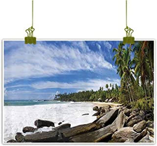 SEMZUXCVO Abstract Painting Seaside Decor Collection Tropical Seashore on Sri Lanka with Palms Hanging Over The Mighty Stones Washed by Sea Picture W47 x L31 Blue Ivory Green