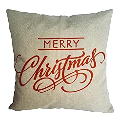 Top 10 Best Christmas Decorations Reviews 2021