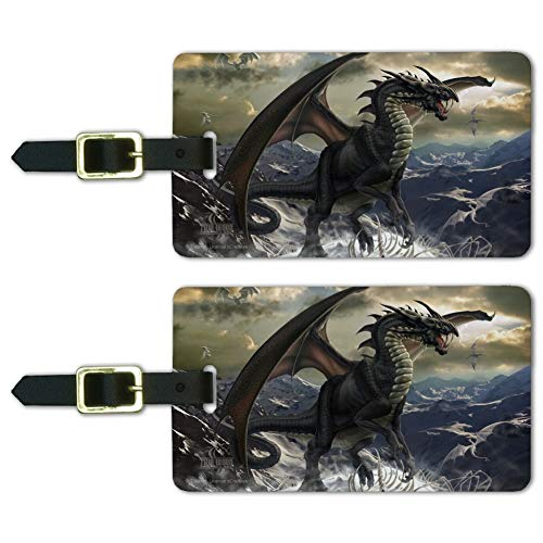 Rogue Dragon Winter Mountain Top Luggage ID Tags Carry-On Cards - Set of 2
