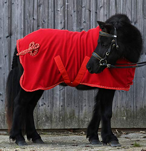 Abschwitzdecke Sissy Paradedecke Rot Schwarz 65 75 85 95 100 Minishetty Shetty Fohlen Fleece Decke Tysons (95, Rot)